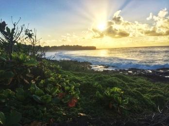 Shipwrecks Beach, Kauai. So beautiful it doesn't even look real!
