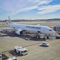 My Ride: JAL 777-300ER